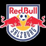 Liefering logo