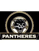 Panthères logo