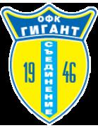 Gigant Saedinenie logo