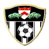 Strumska slava logo