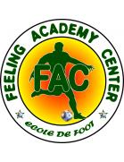 APEJES Academy logo