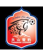 Xinjiang Tianshan logo