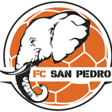 San-Pedro logo