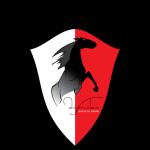 Merani Martvili logo