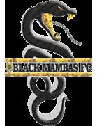 Black Rhinos logo