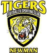 Azam Tigers logo