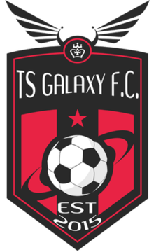 TS Galaxy logo