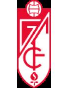 Buzanada logo