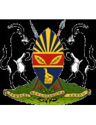 Harare City logo