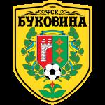 Bukovyna logo