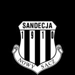 Sandecja Nowy Sącz logo