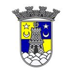 Sintrense logo