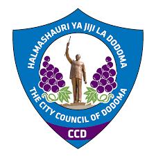 Dodoma Jiji logo