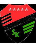 Kocaeli Birlikspor logo