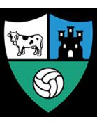 Borja logo