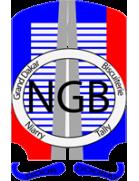 Niarry Tally logo